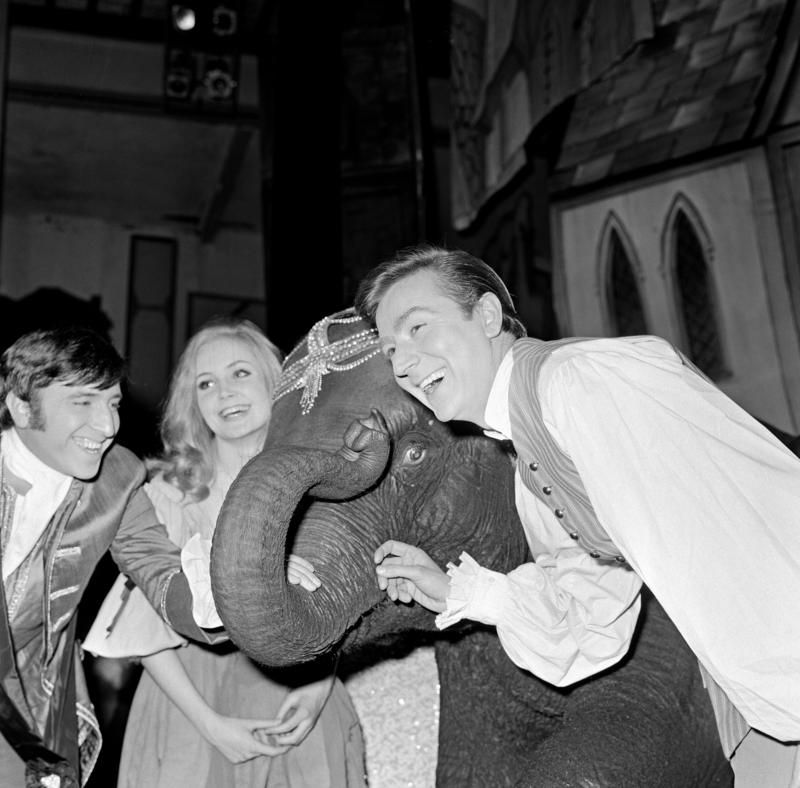 Pippa Steel as Cinderella and Des O'Connor as Buttons with Tanya the Elephant.