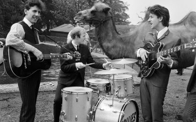 Bits & Pieces – The Hollies visit the Zoo…