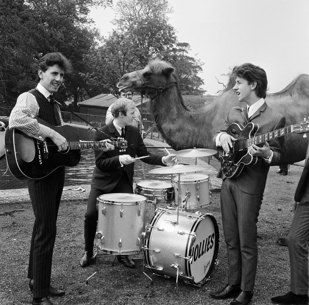 The Hollies visit the Zoo