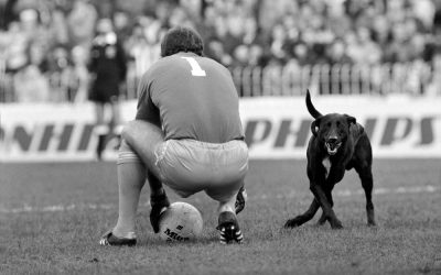 This Week – Dog invades pitch at Maine Road…