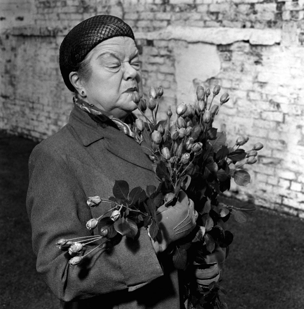 Ena Sharples (Violet Carson) with the rose created in her honour, May 1963