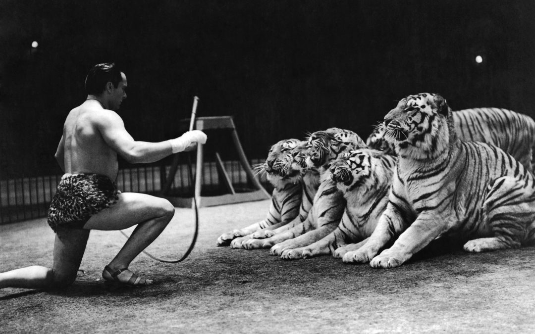 Christmas at Belle Vue with Gilbert Honch and his Tigers