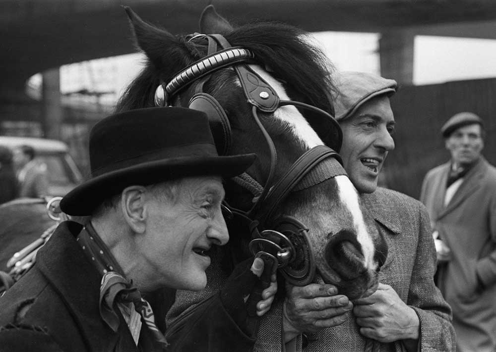 Wilfrid Brambell with Harry H. Corbett and Hercules the cart horse, January 1970