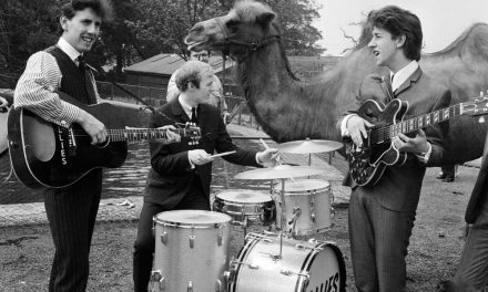Hollies don't stop for camel