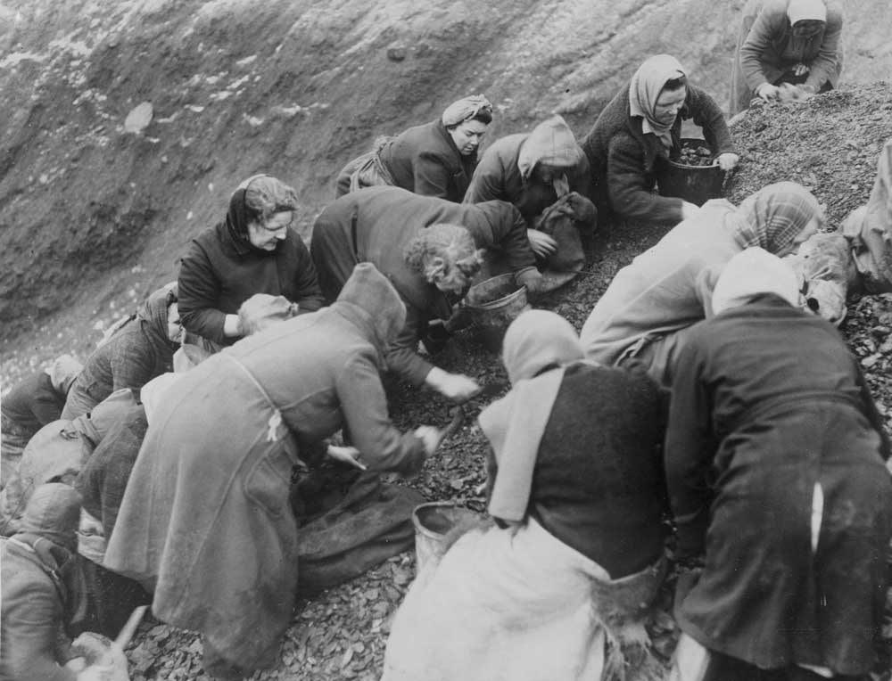 Women search a slag heap for pieces of coal at Gorton pit, January 1945