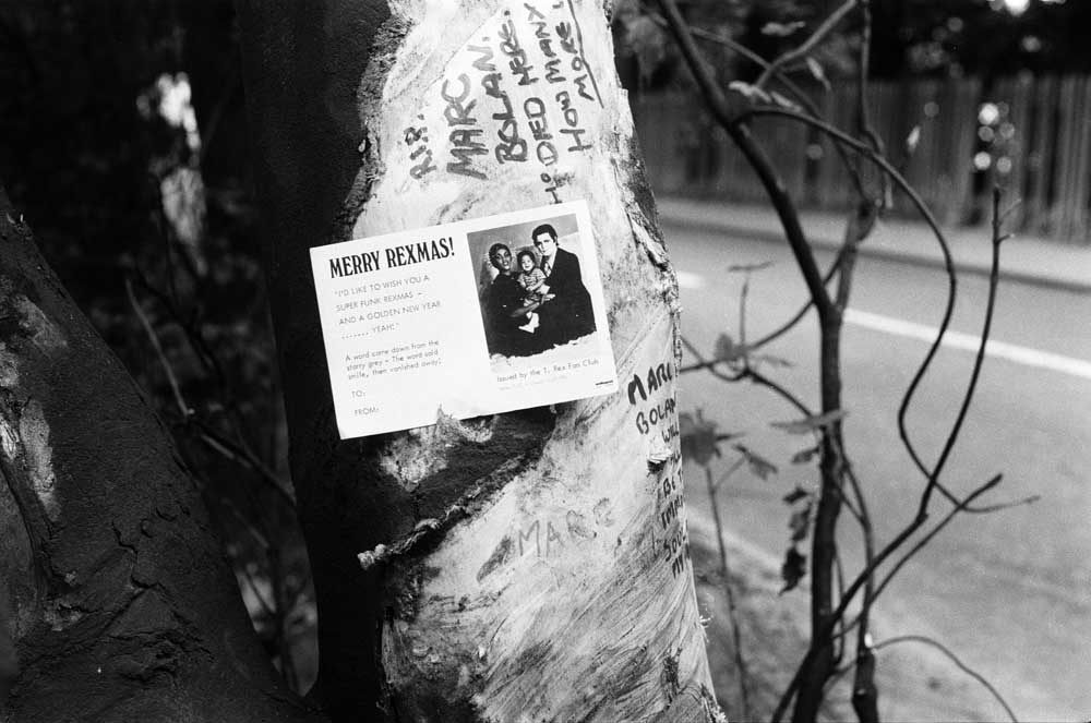 Tributes at the site of the crash where Marc Bolan died, September 1977